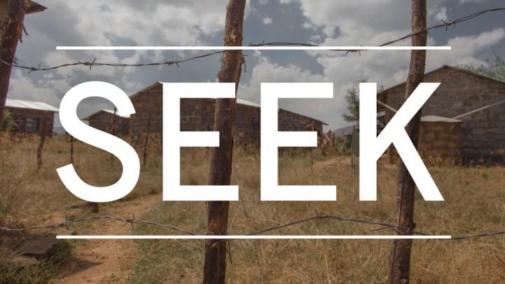 Seek the Peace